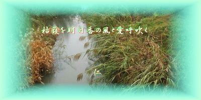 Paiko12503kareyosiwoasukanokaze1c2