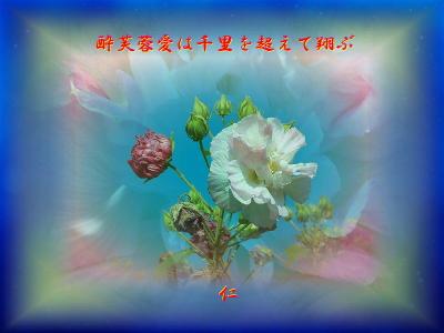 Mokoisanka575x11p100801suifuyoaiha1