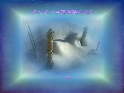 Yuyu575w12z010107fuyunomeya1per