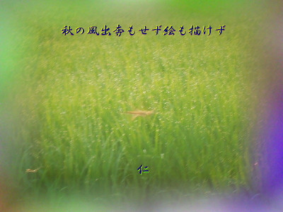 Photvr3103akinokazesyuppon1kon