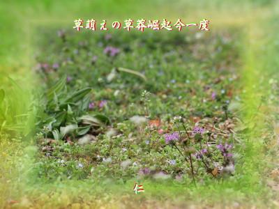Turedure575zrx0412kusamoeno1w2
